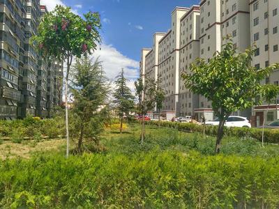 拉萨市圣城.锦苑小区位于金珠西路和空指路的交界处,周边交通、饮食、购物非常方便,采光很好。007真人 公司从2016年4月16日开始对圣城.锦苑进行绿化种植,总面积达到15000多平方米。