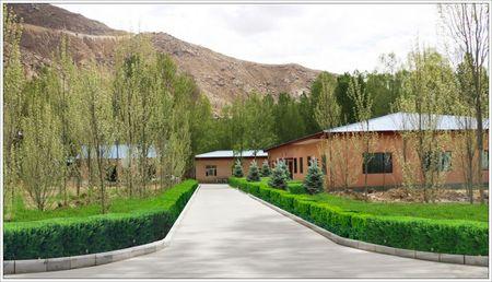 西藏军区总医院占地面积约41万余平方米,建筑面积7万余平方米,2017年5月2日至2017年5月16日西藏007真人 园林有限公司组织绿化工作人员在西藏军区总院进行苗木种植,有侧柏、丛生红叶李、樱花等8000余棵,保证品种,保证成活,一次验收合格,客户满意率百分百。