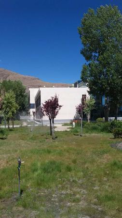 西藏空勤部队绿化景观工程,客户满意率百分百。